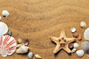 Rent a car Obzor beach Bulgaria
