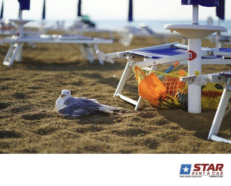 Слънчев бряг България